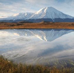 Растительность вблизи Ключевской группы вулканов
