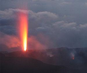 В исчезновении древних животных виновны вулканы